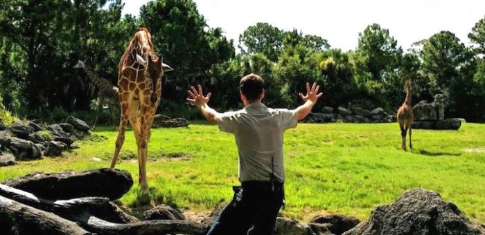 parodie-scena-jurassic-world-dinosauri-animali-zoo-03