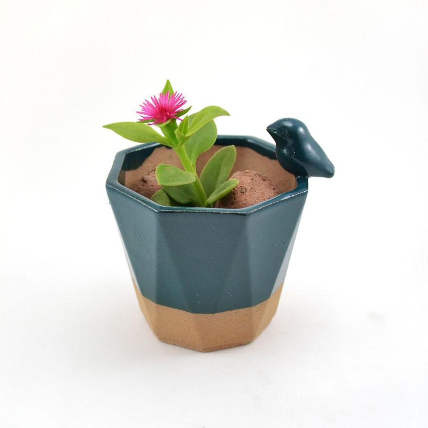 piccoli-adorabili-vasi-fioriere-forma-animali-ceramica-priscilla-ramos-05