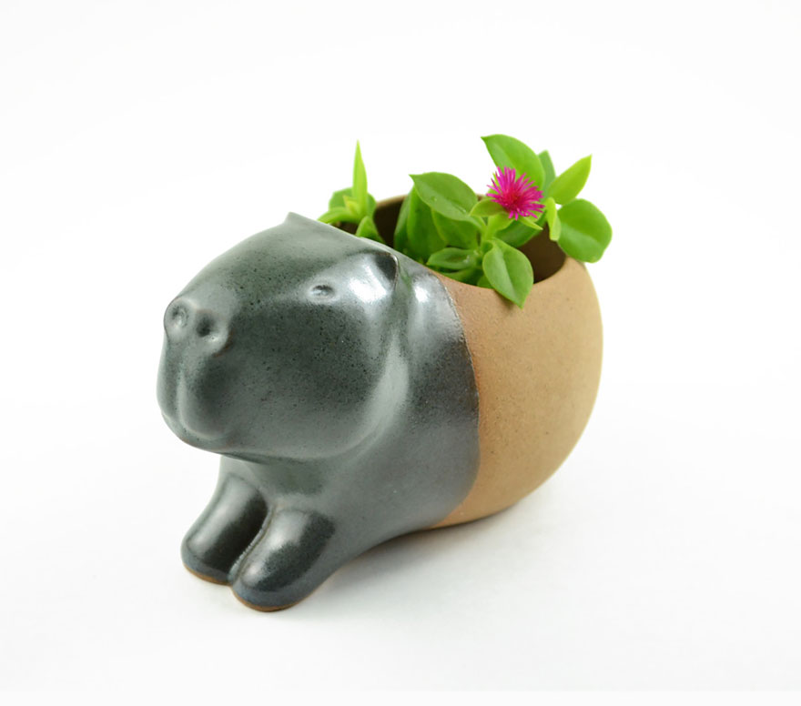 piccoli-adorabili-vasi-fioriere-forma-animali-ceramica-priscilla-ramos-08