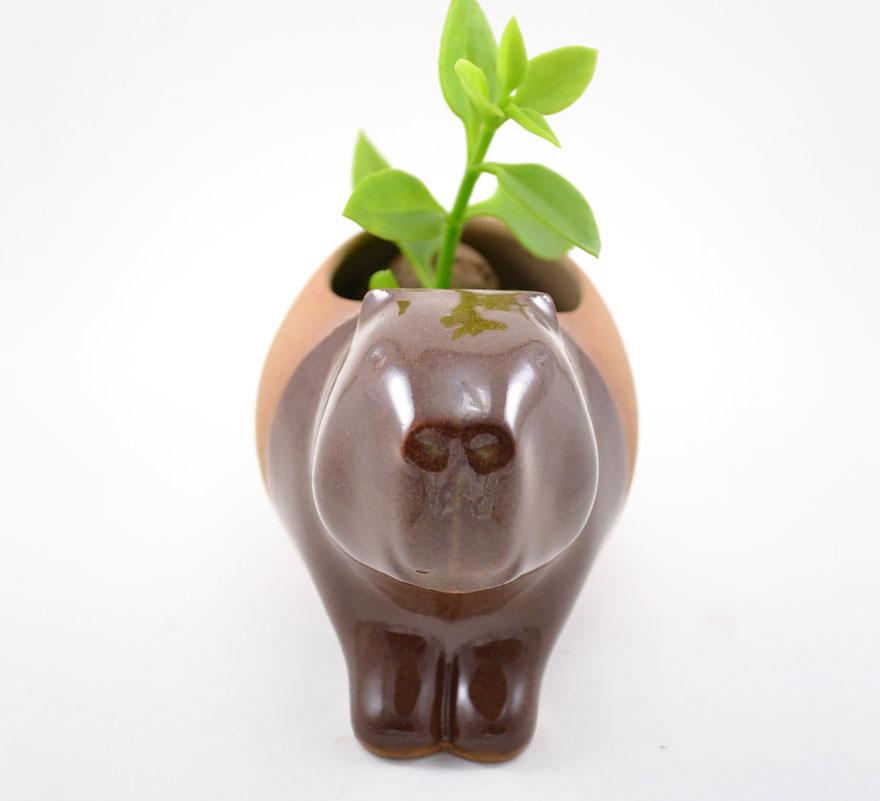 piccoli-adorabili-vasi-fioriere-forma-animali-ceramica-priscilla-ramos-12