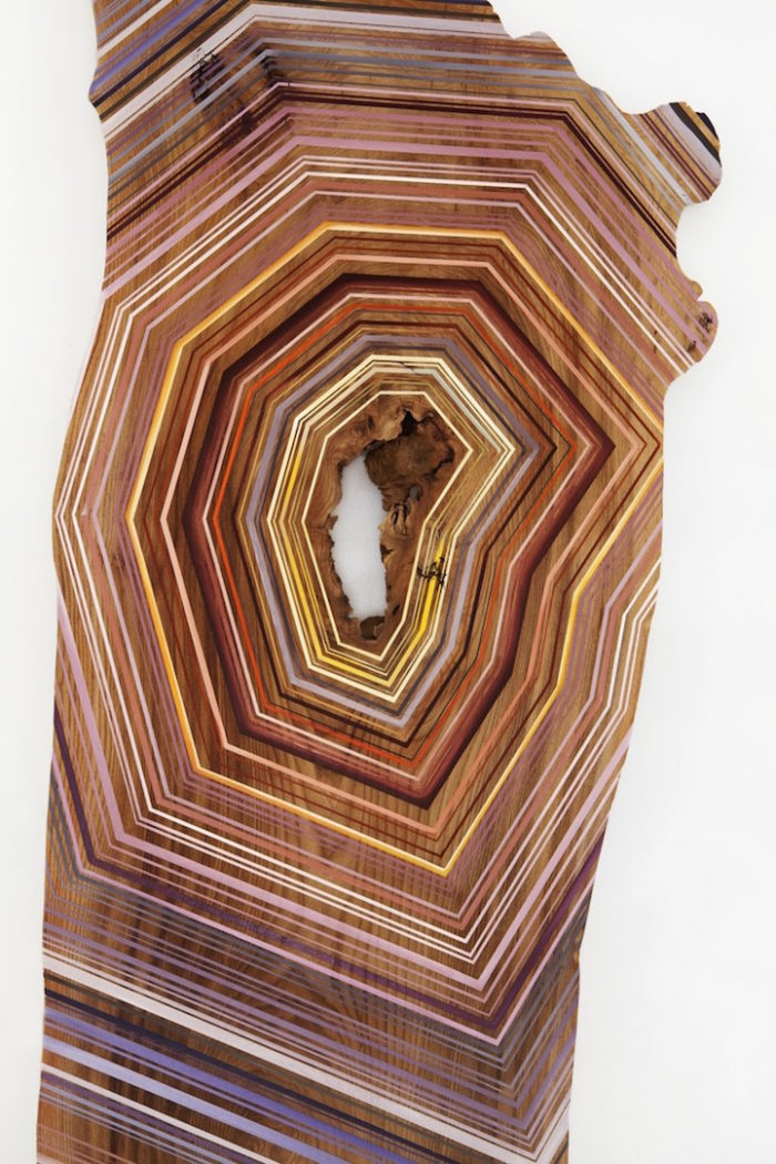 pittura-su-legno-riciclato-venature-jason-middlebrook-05