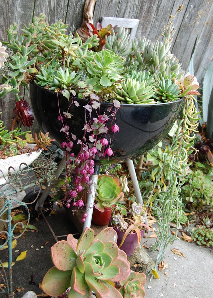 riciclare-mobili-vecchi-giardino-piante-idee-16