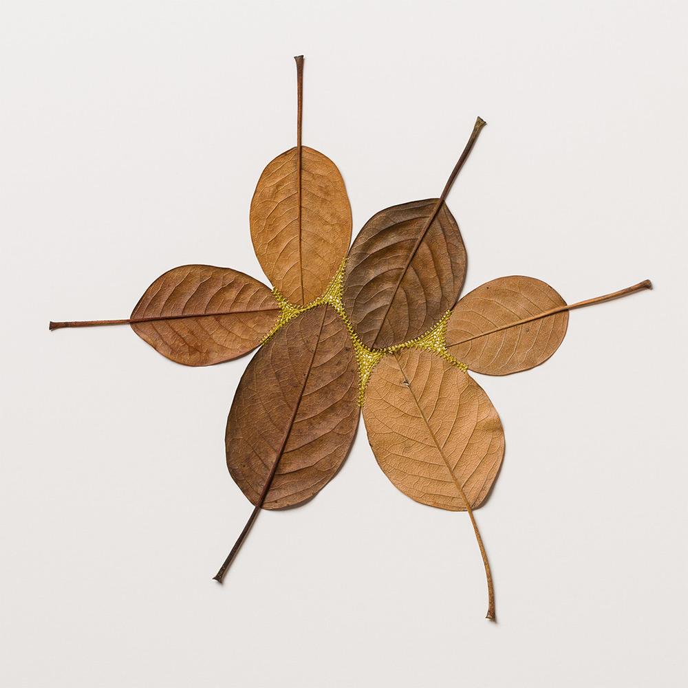 sculture-foglie-secche-uncinetto-filo-arte-susanna-bauer-04