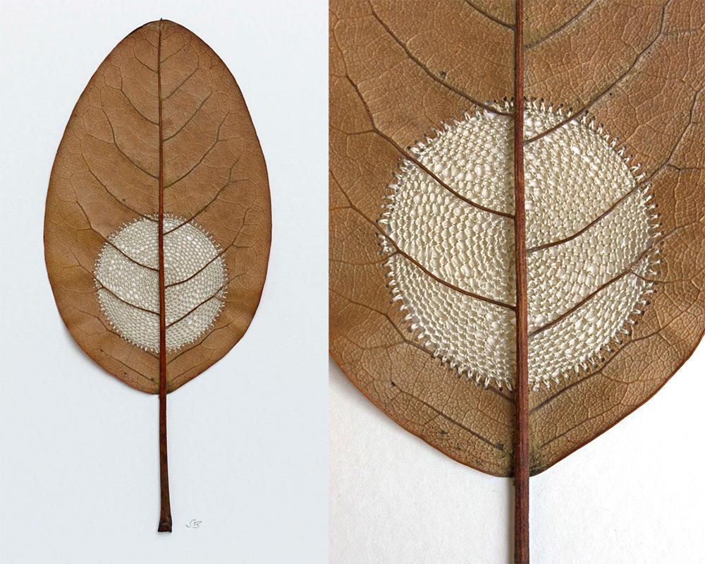 sculture-foglie-secche-uncinetto-filo-arte-susanna-bauer-11