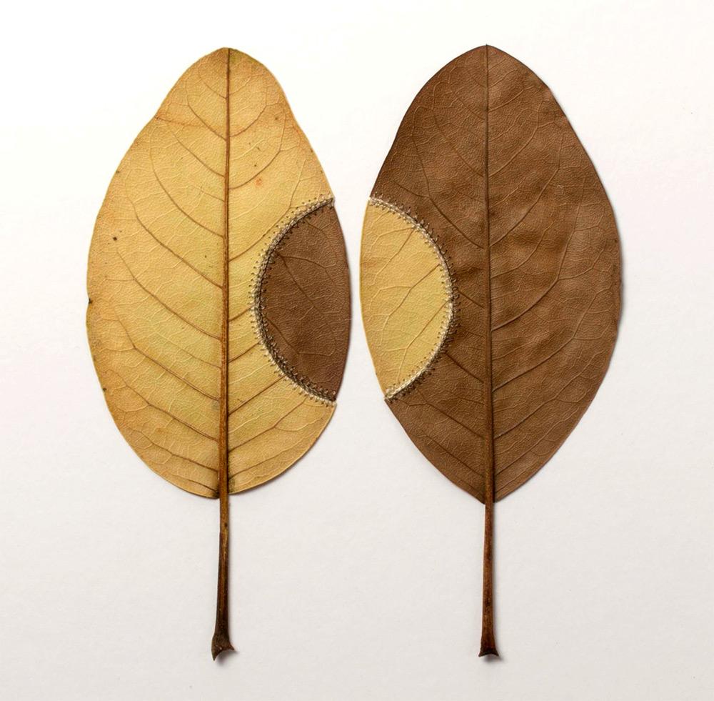 sculture-foglie-secche-uncinetto-filo-arte-susanna-bauer-12