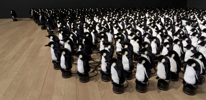 specchio-interattivo-pinguini-peluche-daniel-rozin-2