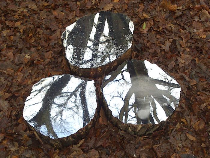 splendide-installazioni-specchi-legno-natura-lee-borthwick-06