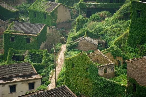 villaggio-abbandonato-natura-verde-zhoushan-cina-2