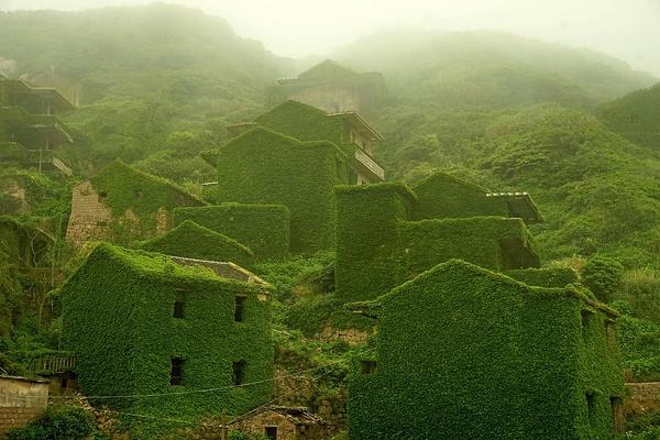 villaggio-abbandonato-natura-verde-zhoushan-cina-3