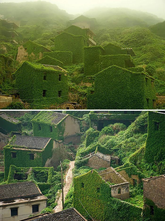 villaggio-abbandonato-natura-verde-zhoushan-cina-4