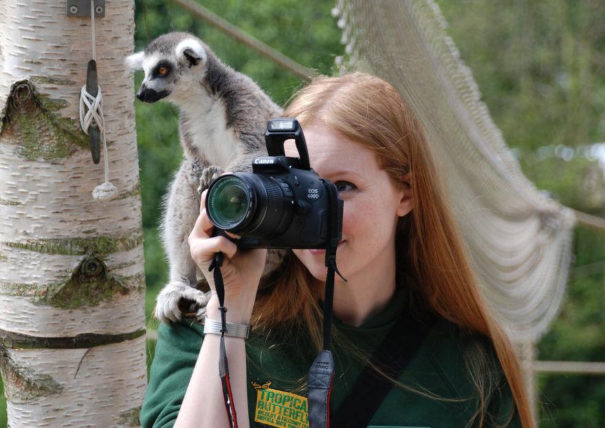 animali-con-macchina-fotografica-aiutano-fotografi-01