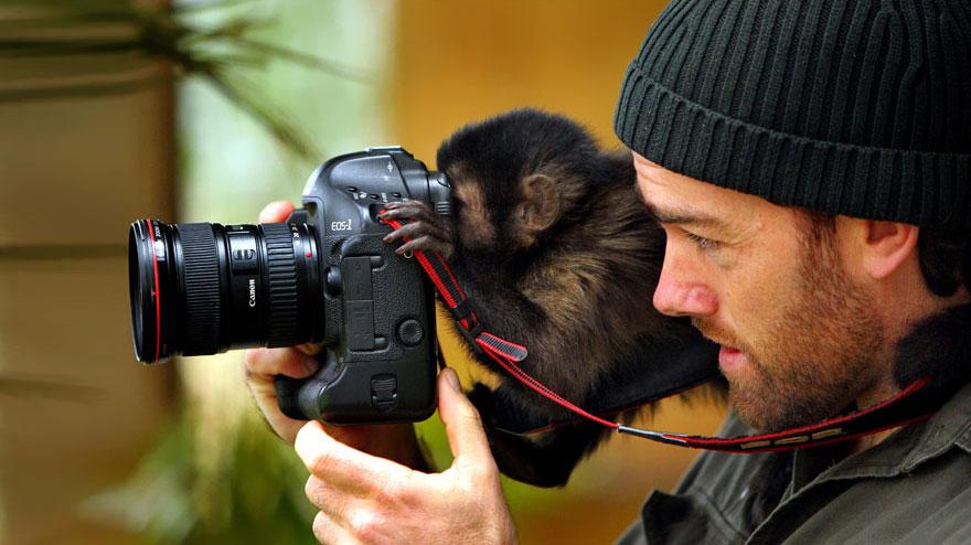animali-con-macchina-fotografica-aiutano-fotografi-04