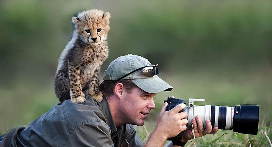 animali-con-macchina-fotografica-aiutano-fotografi-06
