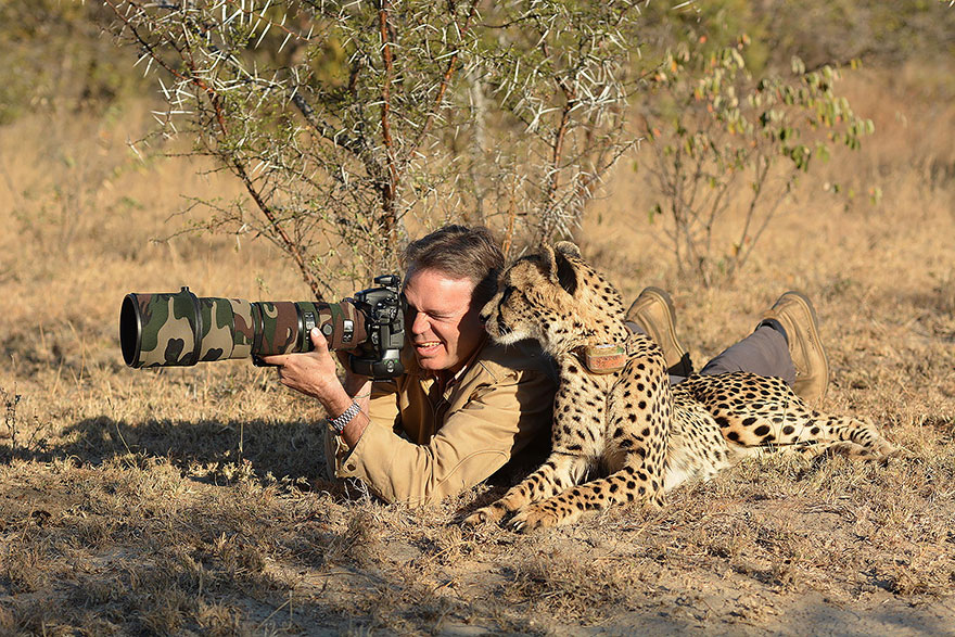 animali-con-macchina-fotografica-aiutano-fotografi-14