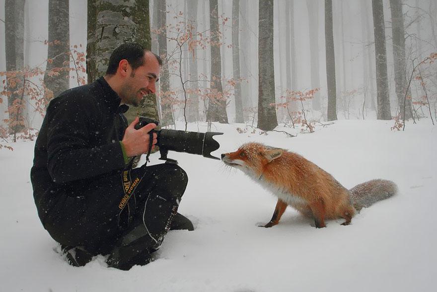 animali-con-macchina-fotografica-aiutano-fotografi-16