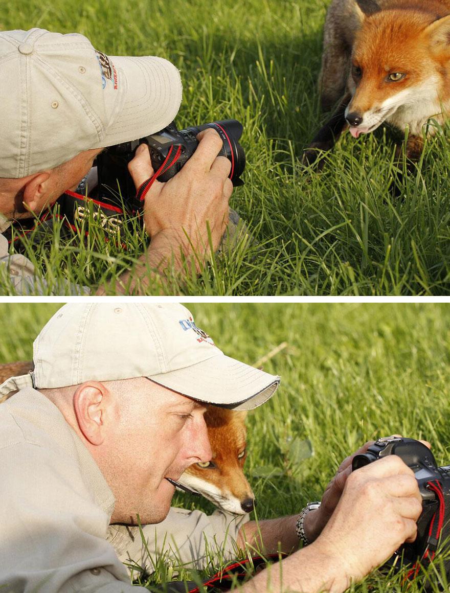 animali-con-macchina-fotografica-aiutano-fotografi-28