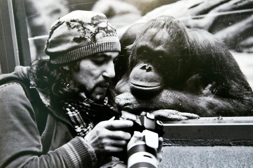 animali-con-macchina-fotografica-aiutano-fotografi-36