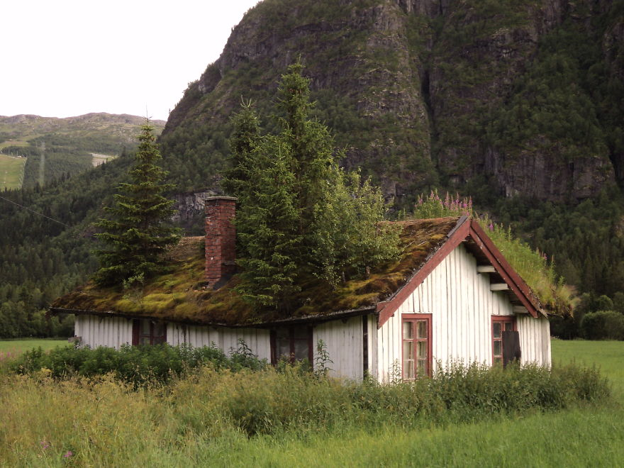 architetture-fiabesche-norvegia-12