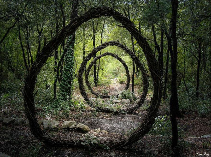 arte-sculture-organiche-foresta-boschi-natura-spencer-byles-02