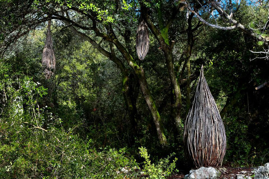 arte-sculture-organiche-foresta-boschi-natura-spencer-byles-09