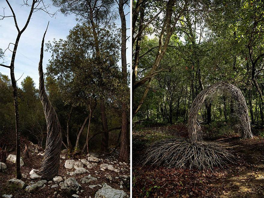 arte-sculture-organiche-foresta-boschi-natura-spencer-byles-13