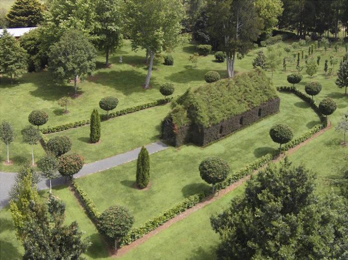 chiesa-fatta-di-alberi-nuova-zelanda-barry-cox-1