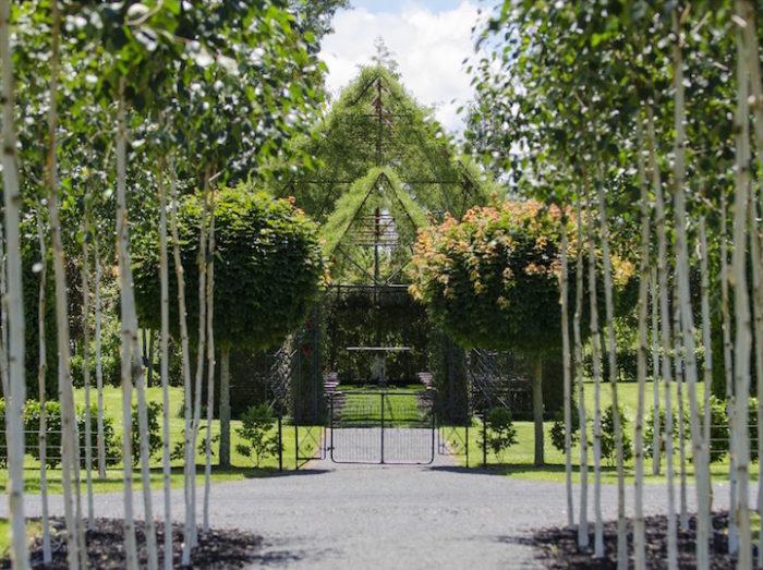 chiesa-fatta-di-alberi-nuova-zelanda-barry-cox-5