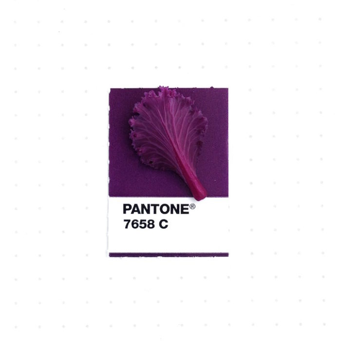designer-associa-oggetti-pantoni-inka-mathew-06