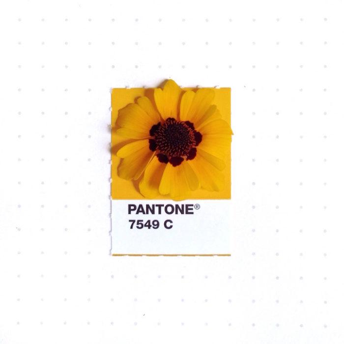 designer-associa-oggetti-pantoni-inka-mathew-08