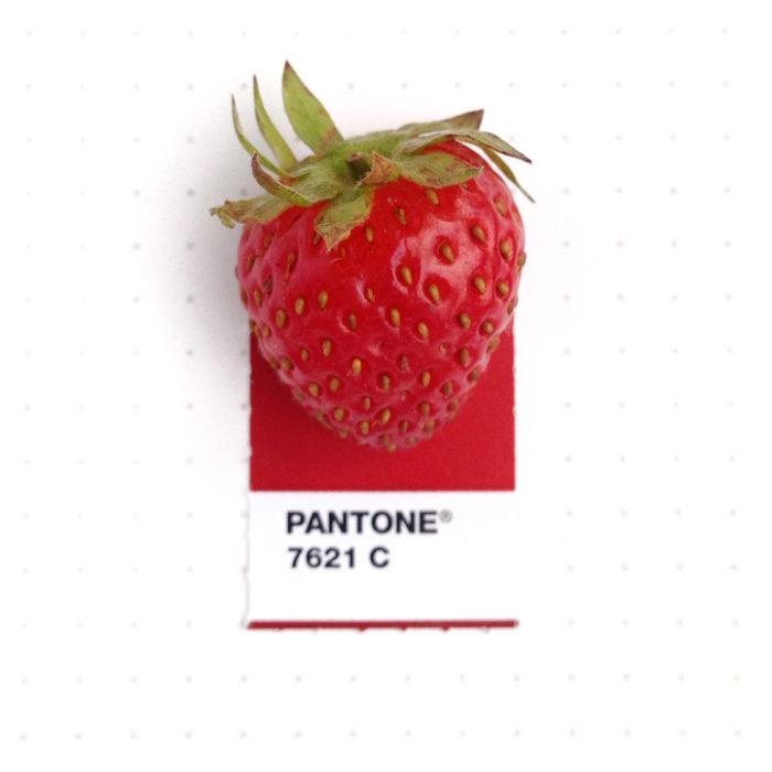 designer-associa-oggetti-pantoni-inka-mathew-09