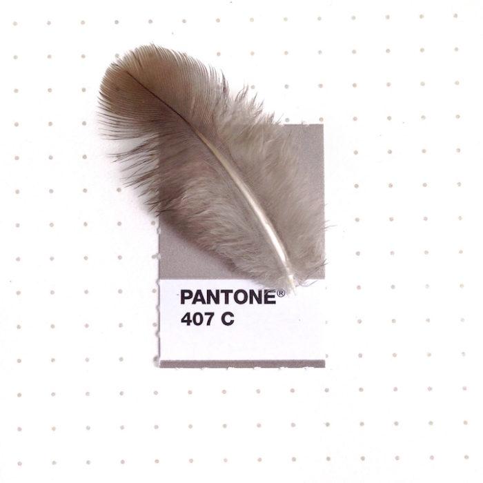 designer-associa-oggetti-pantoni-inka-mathew-10