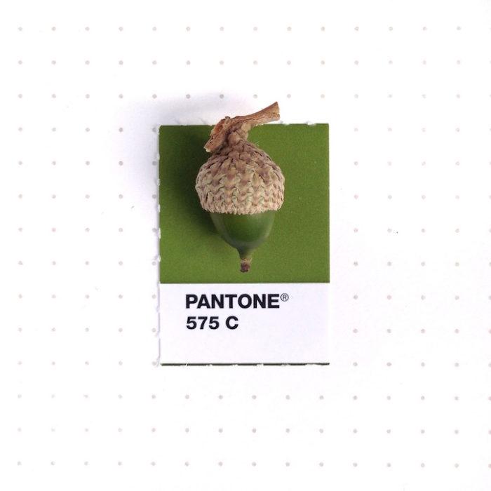 designer-associa-oggetti-pantoni-inka-mathew-11