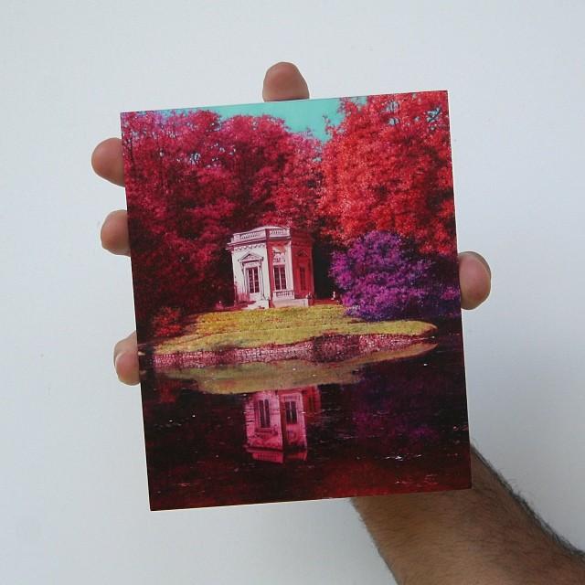 dipinti-iperrealistici-dettagliati-michael-zavros-09