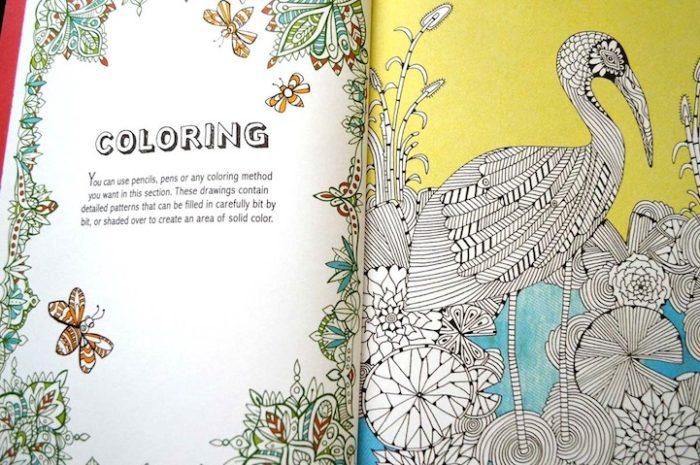 disegni-da-colorare-per-adulti-terapia-anti-stress-Davies-Merritt-Taylor-4