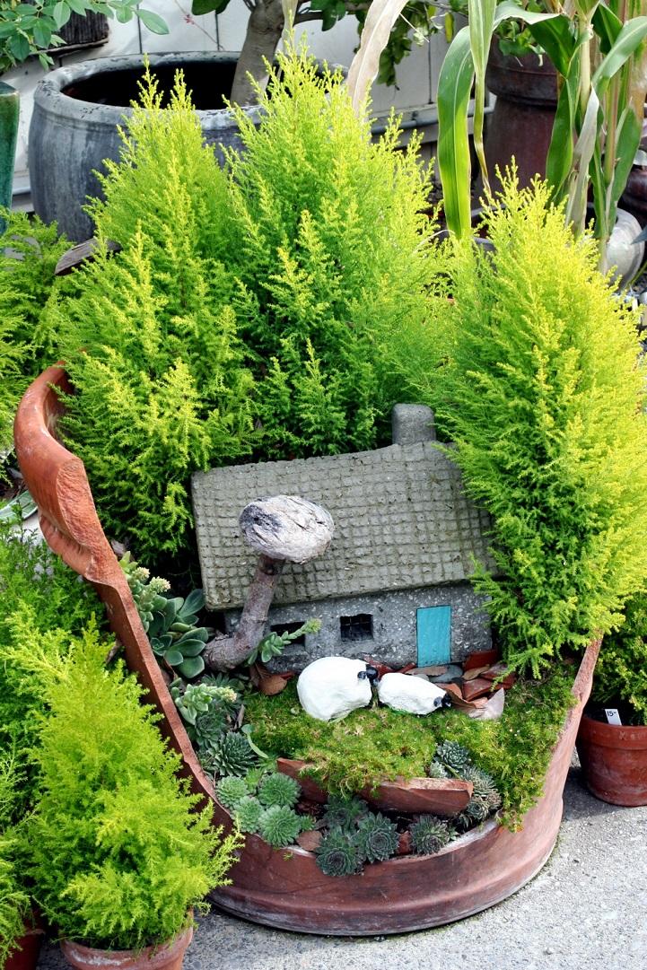 fai-da-te-vasi-rotti-riciclati-trasformati-giardini-fatati-07