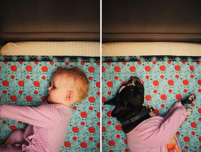 foto-bambina-cane-stessa-posa-vestiti-jesse-holland-09