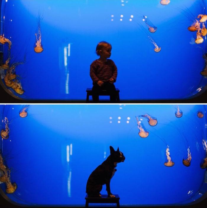 foto-bambina-cane-stessa-posa-vestiti-jesse-holland-12