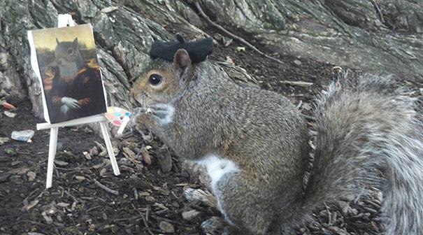 foto-scoiattoli-vestiti-costume-sneezy-mary-krupa-05