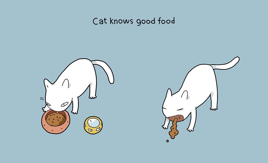 illustrazioni-comiche-vantaggi-avere-gatto-lingvistov-10