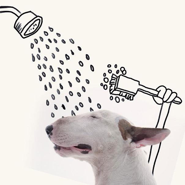 illustrazioni-divertenti-interattive-cane-jimmy-choo-rafael-mantesso-02