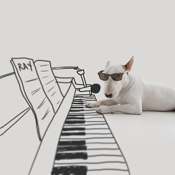 illustrazioni-divertenti-interattive-cane-jimmy-choo-rafael-mantesso-08