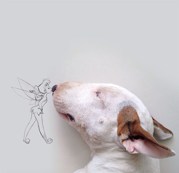 illustrazioni-divertenti-interattive-cane-jimmy-choo-rafael-mantesso-13