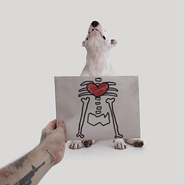 illustrazioni-divertenti-interattive-cane-jimmy-choo-rafael-mantesso-16