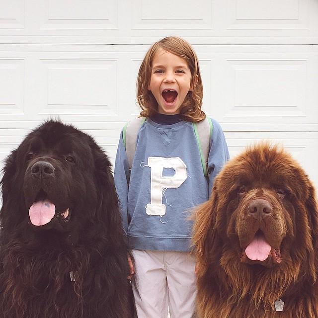 mamma-fotografa-figlio-cani-cavallo-amicizia-stasha-becker-07