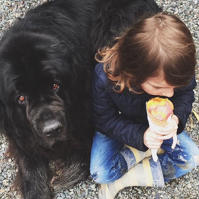 mamma-fotografa-figlio-cani-cavallo-amicizia-stasha-becker-12