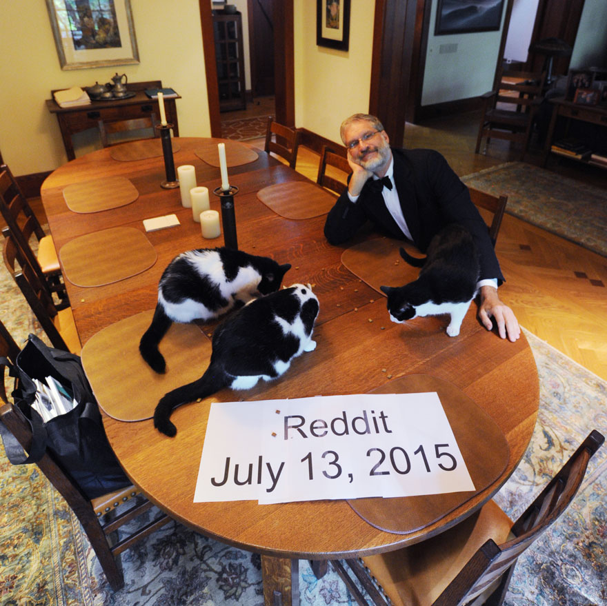 marito-organizza-scherzo-moglie-cena-elegante-con-gatti2