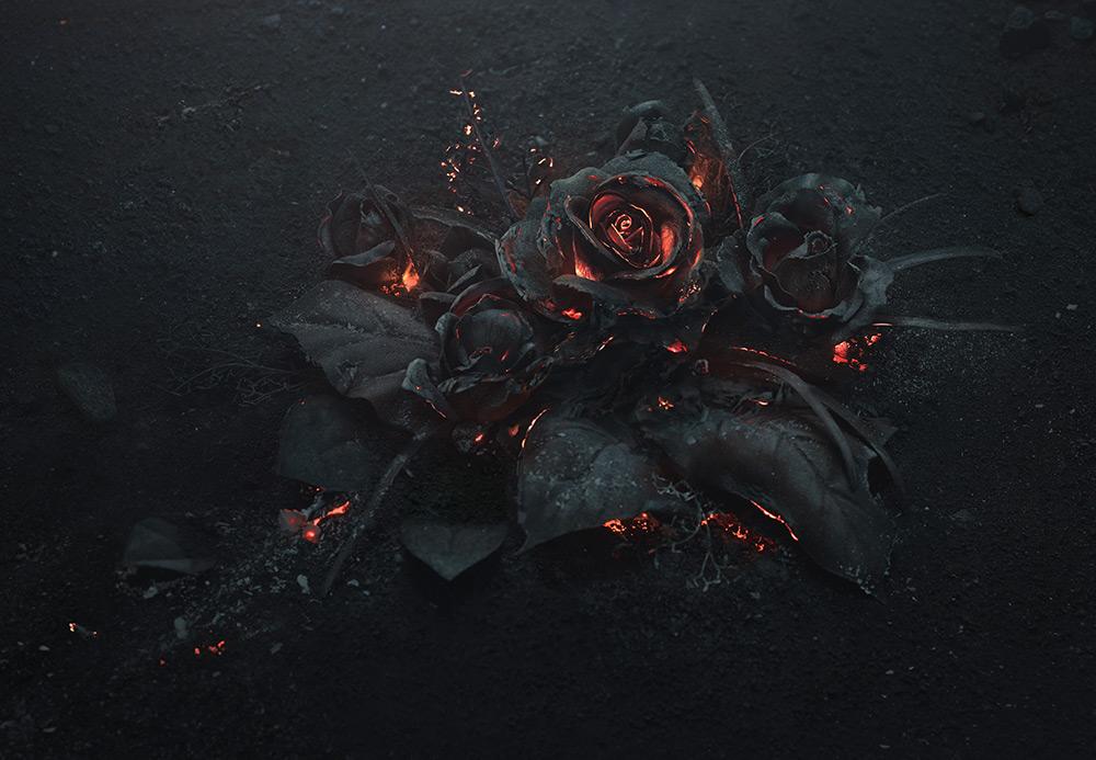 mazzo-di-rose-bruciate-fotografia-ars-thanea-1