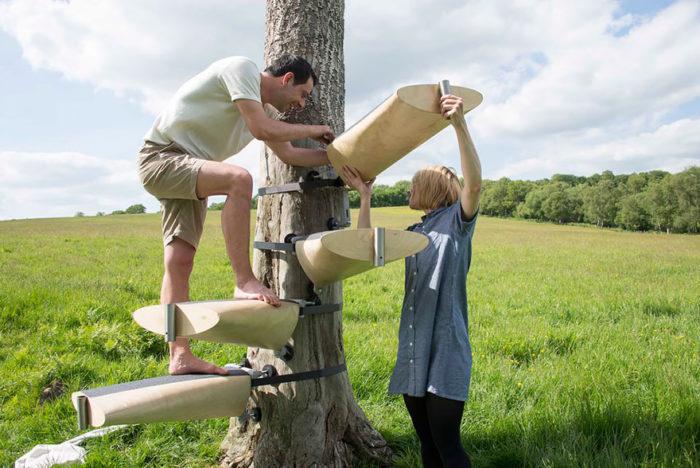 scala-chiocciola-albero-tronco-thor-ter-kulve-robert-mcintyre-canopy-01