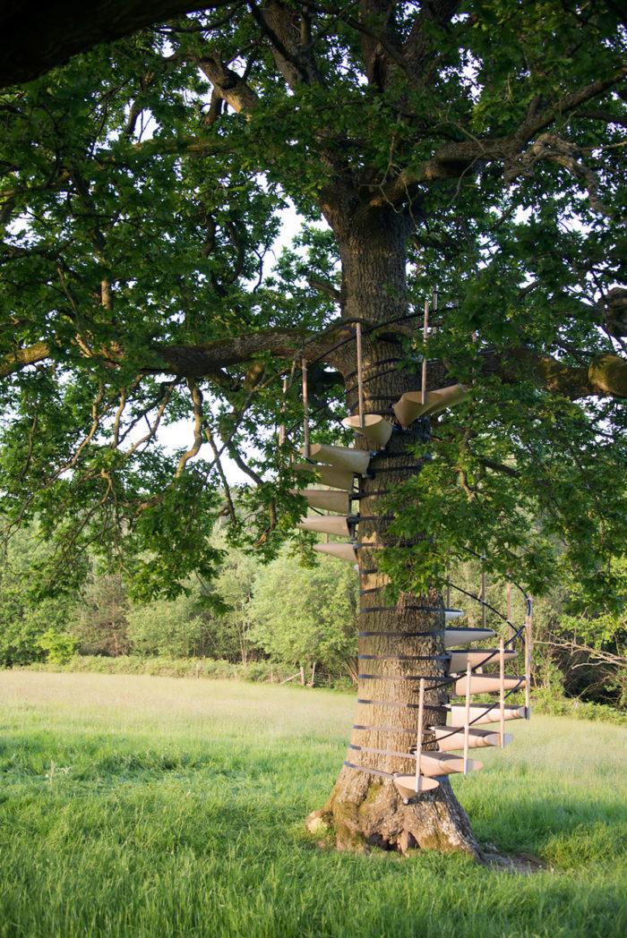 scala-chiocciola-albero-tronco-thor-ter-kulve-robert-mcintyre-canopy-05