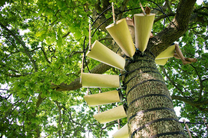 scala-chiocciola-albero-tronco-thor-ter-kulve-robert-mcintyre-canopy-08